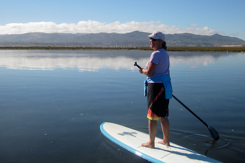 Kerry Lee Bates with over 100 American White Pelicans (Pelecanus erythrorhynchos) on Grassy Island in background during a Stand-up Paddle (SUP) outing 19 Sept 2010 Morro Bay CA | by mikebaird