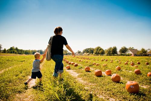 haloween pumpkinpatch nathaniel