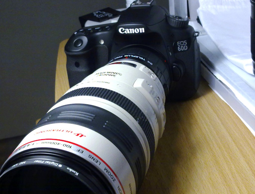 Canon 60D Canon EF 100-400mm f/4 5-5 6L IS 2x converter | Flickr