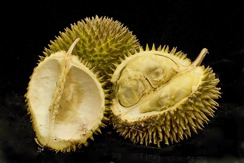 Durian  - King of Fruits | by Hafiz Issadeen