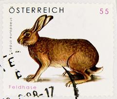 beautiful stamp Austria 55c lepus europaeus postzegel timbres Autriche Österreich Briefmarke Feldhase rabbit bunny lièvre liebre lepre € 0.55 postzegel Oostenrijk طوابع النمسا frimærker østrig markica Austrija टिकटों ऑस्ट्रिया francobollo Austria スタンプ オース