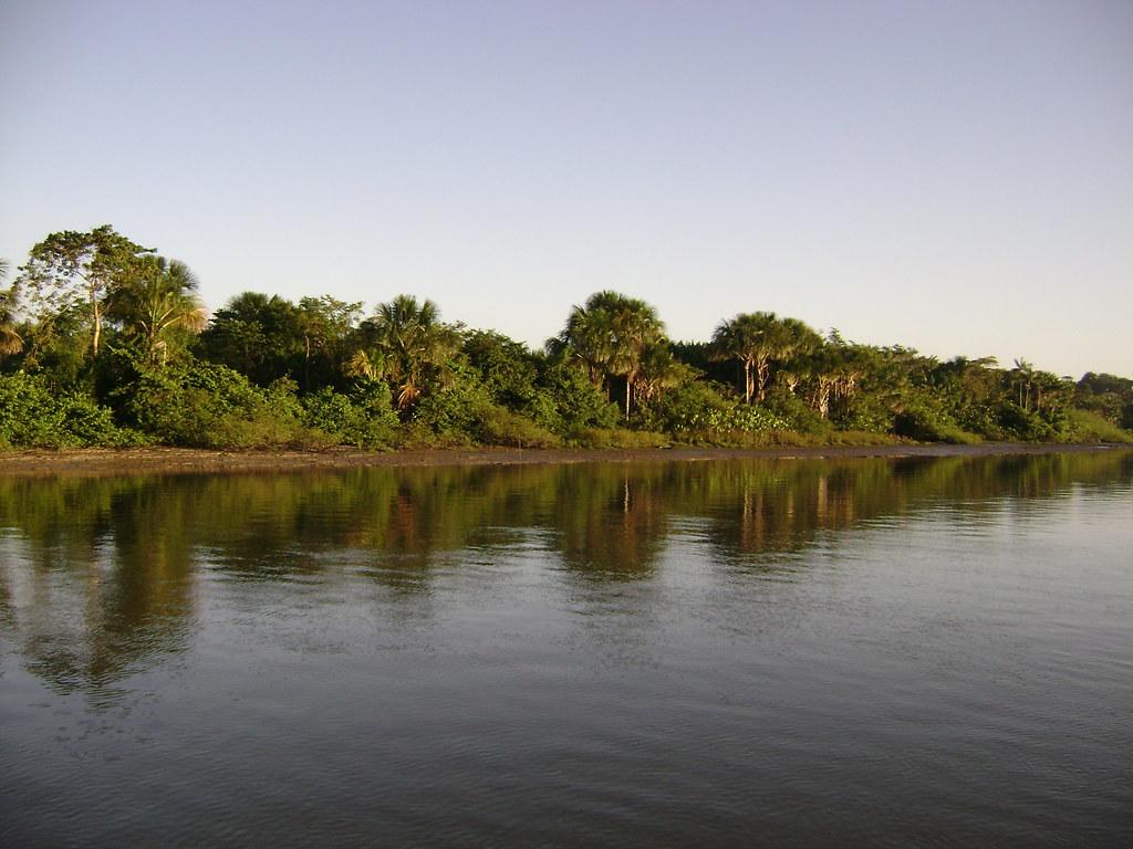 Bujaru Pará fonte: live.staticflickr.com