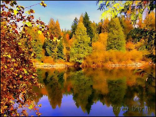 autumn lake canada fall water colors landscape britishcolumbia autumncolors hdr vancouverarea arianwen heywardlake