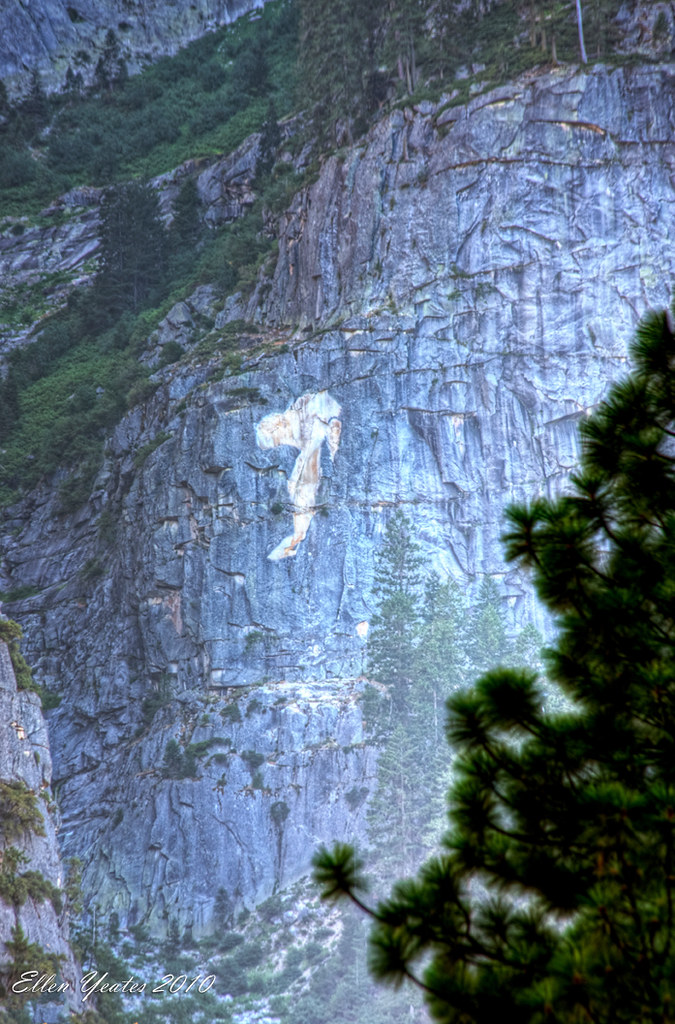 Close up shot Snoopy at Yosemite Valley | See My Photography