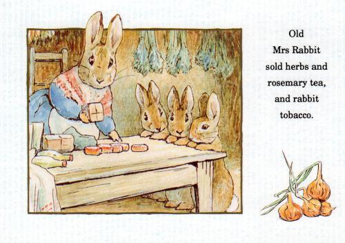 Beatrix Potter Old Mrs Rabbit Postcard