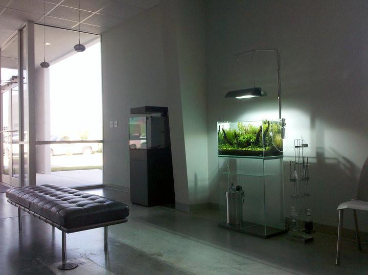 66+ Ide Aquascape Design Room HD Terbaik Unduh Gratis