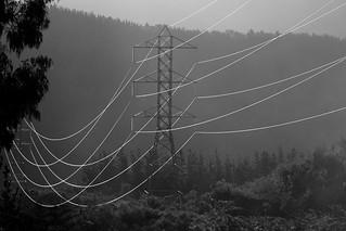 Wired | by Stephen Edmonds