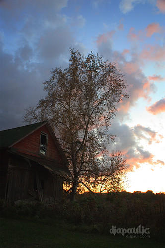 sunset sky building tree fall abandoned wisconsin clouds barn dusk decay farm fallcolors shed decayed weston wausau beautifuldecay omot