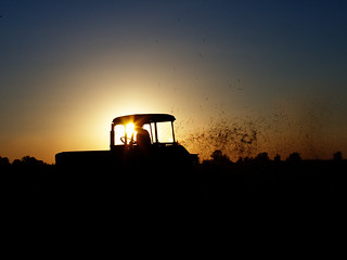 Late harvest | by Olgierd Pstrykotwórca