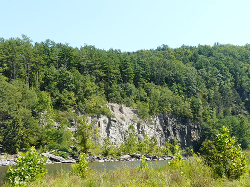 new york summer nature upstate fossils schoharie