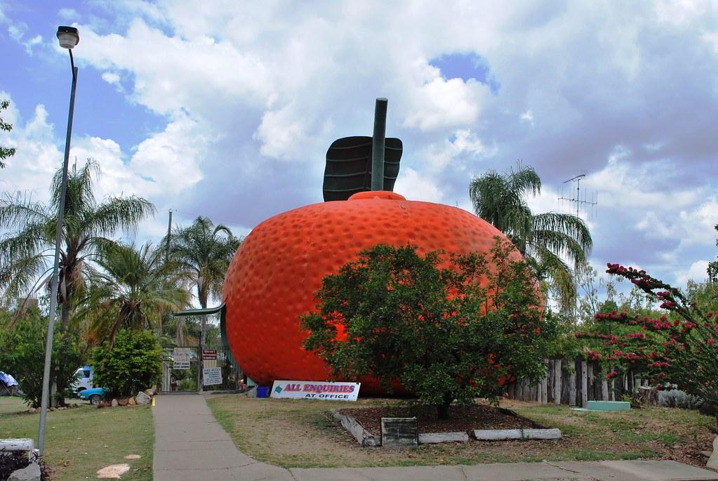 Big Mandarin, Mundubbera