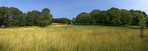travel trees sky panorama tree nature grass unitedstates pennsylvania unitedstatesofamerica panoramic pa valleyforge americanrevolutionarywar continentalarmy georgewashingtonsheadquarters canon7d