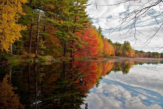 Why I Love Autumn in New England