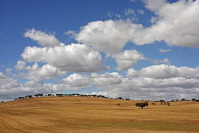 Nuvens de Algodão