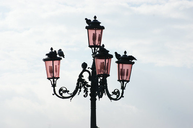 My Venetian love