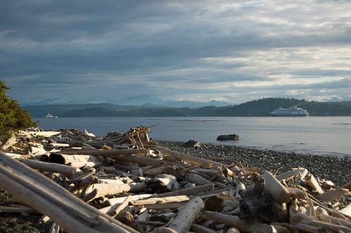 canada sunrise d50 britishcolumbia vancouverisland driftwood campbellriver