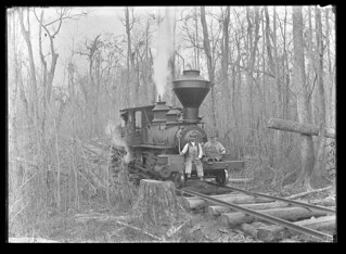 C.C. & P. Railway log train   by The Field Museum Library