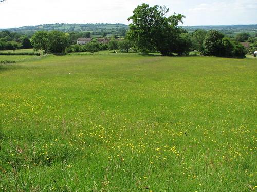 View from old meadow into Lamyatt | by Lamyatt