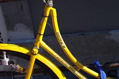 Honey-B bicycle