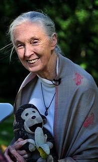 Jane Goodall | by nick step