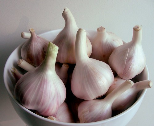 garlic-bowl | by issyeyre