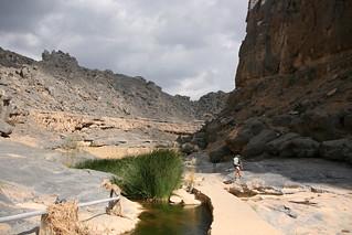 Walking in the wadi   by Marco Zanferrari