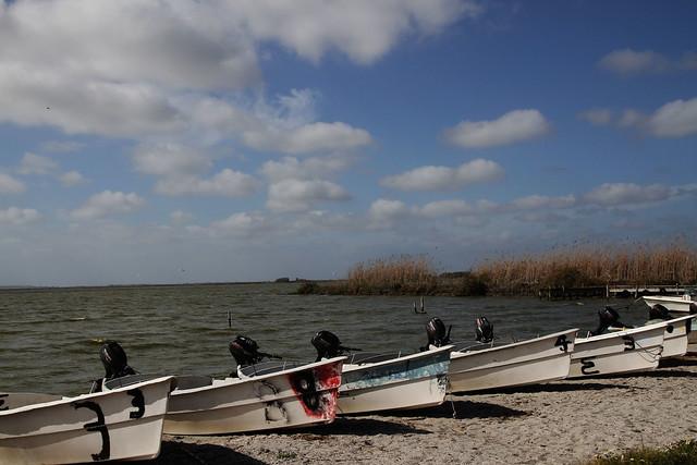 Aiuta la barca del fratello ad attraversare e anche la tua raggiungerà l'altra riva (Proverbio Indù)