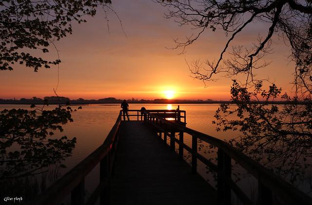 Sunrise at Point Pelee.