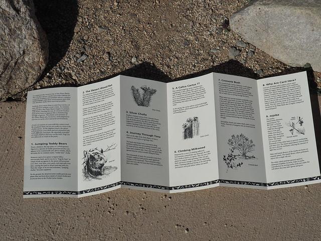 Q3266958 Joshua Tree National Park Cholla Cactus Garden brochure