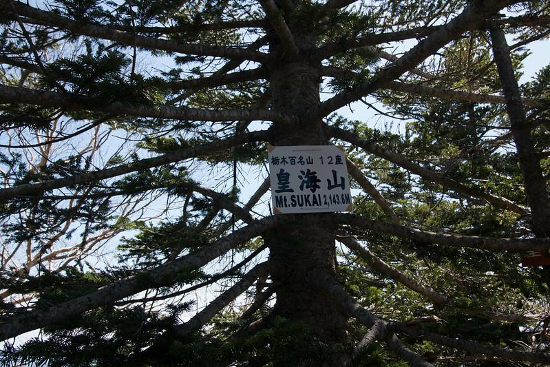 20150510-皇海山-0622.jpg