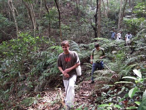 Thu, 04/27/2017 - 11:23 - Stuart Davies in the Tai Po Kau 20 ha plot on 20 June 2012.  Photo credit: Billy Hau