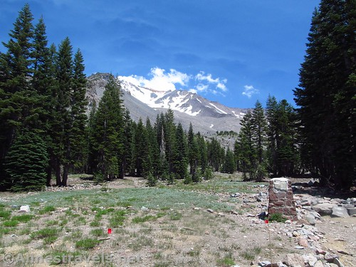 Mt. Shasta from the Horse Camp, California