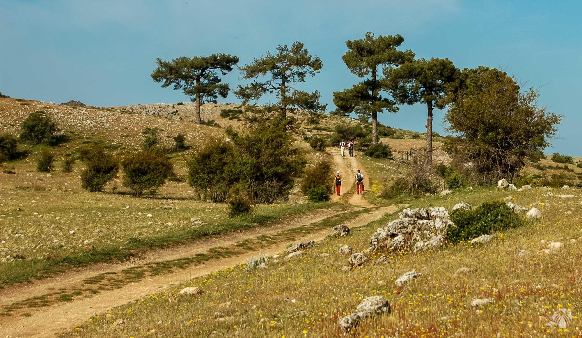 Comenzamos caminando por el camino de los miradores desde Fuente Segura