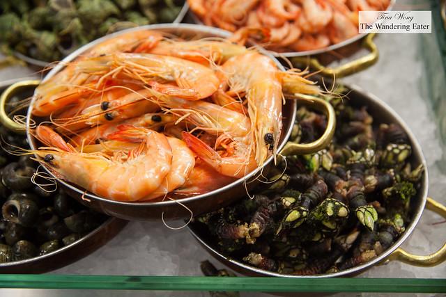 Pristine fresh percebes and large shrimp (Camarão de Espinho)