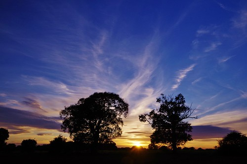 shropshire sunset fields countryside colour trees silhouette sky light