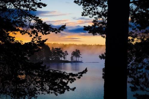 dalarna gimmen lake midsommar midsummer natt night sjö sommarnatt summer sunrise sweden