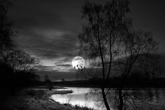 Lake. Moon.