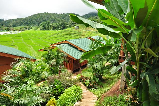 parque nacional de doi inthalon-tailandia
