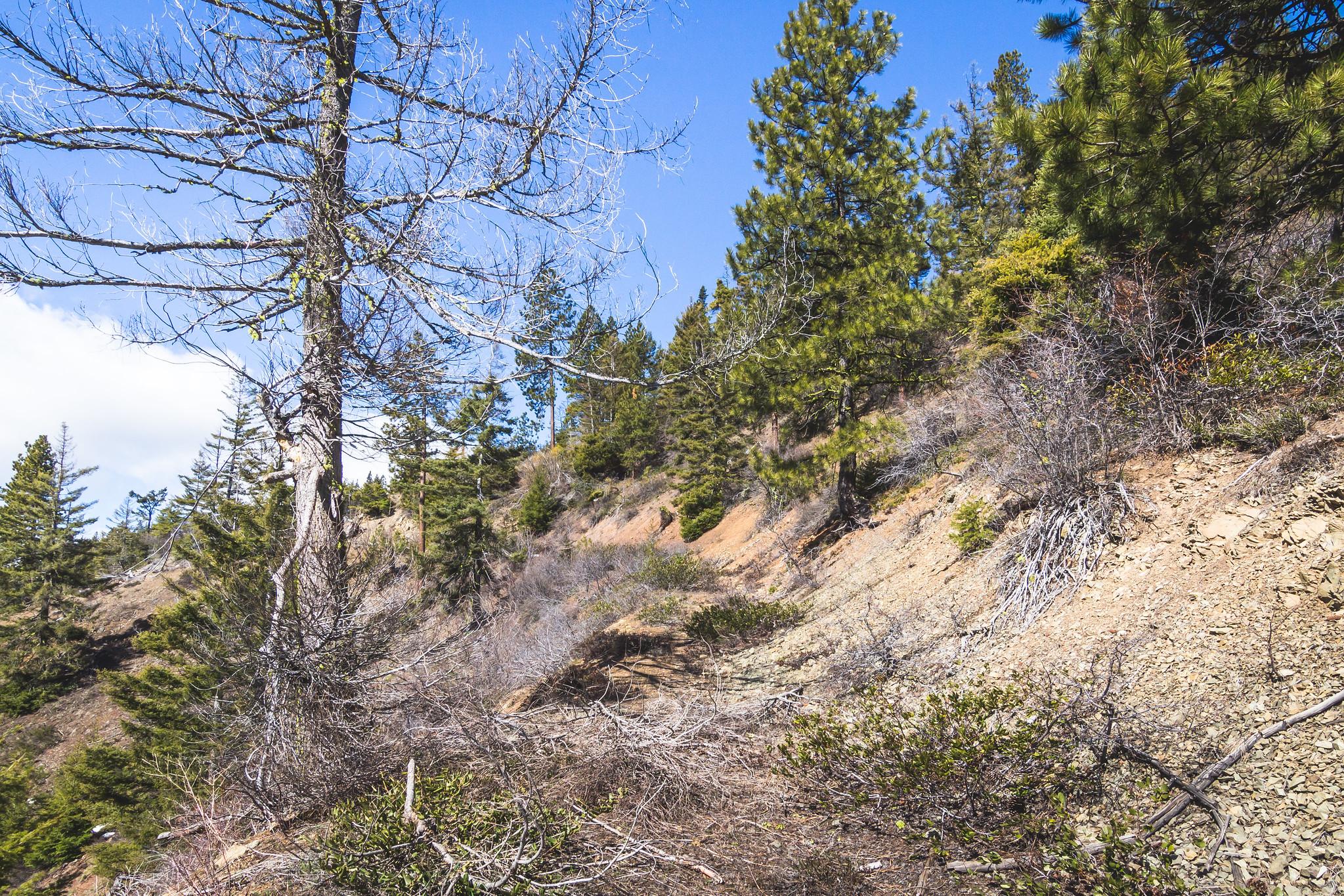 The road to Roughhouse Mountain