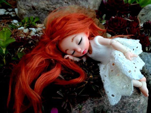 Margo sleeping in the garden