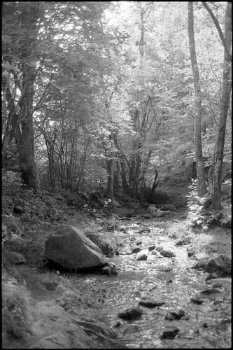 Ruisseau | by ben1chka