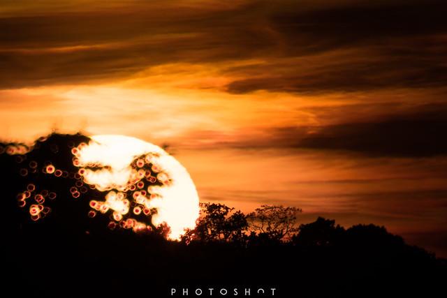 Sunset Close-Up