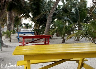 Caye Caulker Belize 22_feistyharriet_April 2017 | by FeistyHarriet