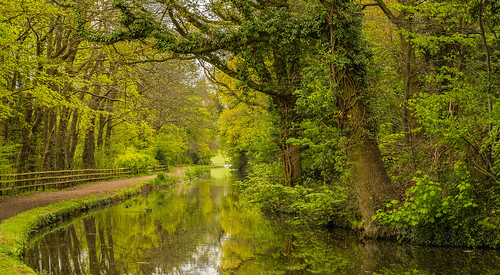 fence stourbridgebirminghamcanal canal waterways uk england worcestershire spring 2017 water reflections towpath bend trees woods woodlands green peaceful serene beauty tranquil path nikon d7100 tamron2470f28vc landscape outdoor