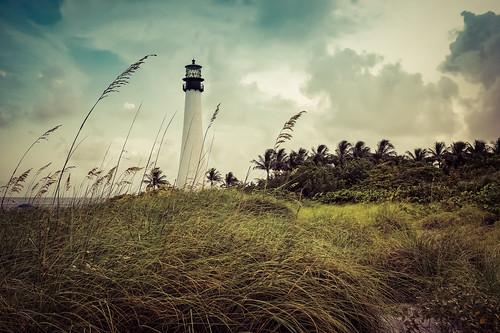 scape landscape grass grassland dunes palms trees palmtrees pond ocean wind sky clouds skyline lighthouse tower painterly painting impression impressionism sony nex3 sel1855 1855mm kit dxo optics dxoopticspro lightroom
