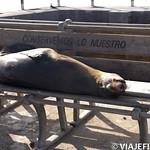 Viajefilos en San Cristobal, Galapagos 005
