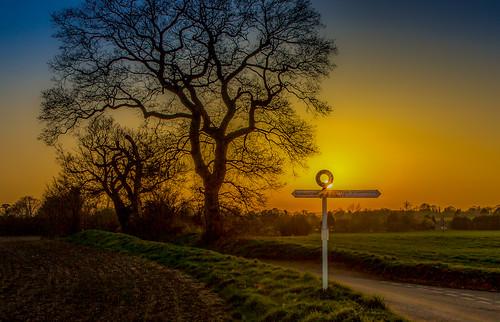 sunset landscape trees sky signs orange glow sun dusk basingstoke manydown rural goldenhour red hampshire oakley wooton