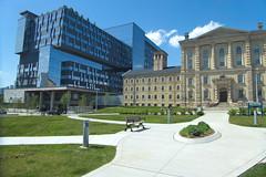 DYΛD Institute