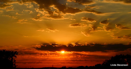 sunsetgoldenlight