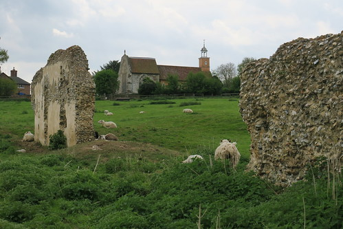 Remaining walls of Tilty Abbey looking toward gatehouse chapel